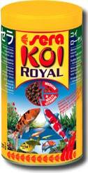 Koi Royal